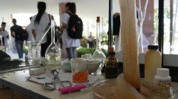 Química-Farmacia: En el tubo de ensayo