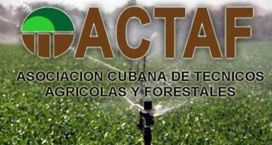 Entrega ACTAF Premio Obra de la Vida al Dr. C. Ricardo Dueñas García