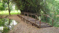 Centro de Estudios Jardín Botánico de Villa Clara, a 15 años de su fundación