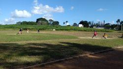 Deportes colectivos inician Criollos 2018