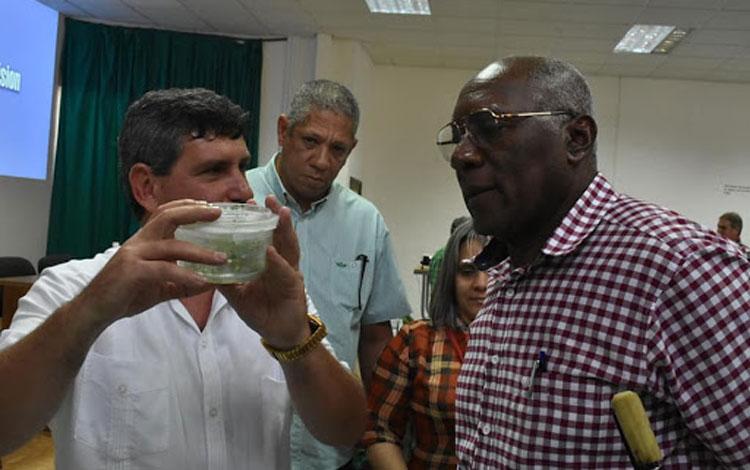 Salvador Valdés Mesa dialoga con Osvaldo Fernández Martínez, director del Instituto de Biotecnología de las Plantas